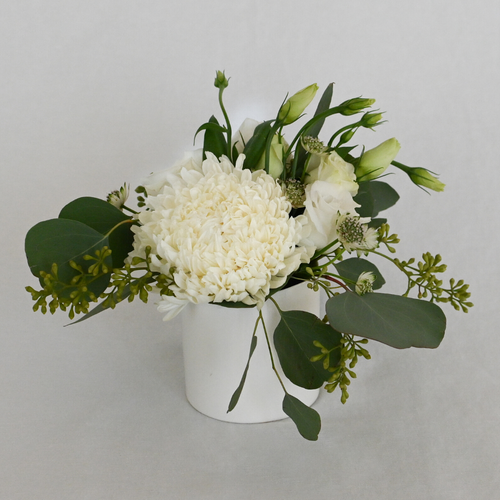 Red Fox Floral. Classic Elegance Accent Arrangement. A petite gathering of roses, spray roses, and stock in white with accent greens.