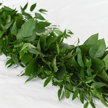Load image into Gallery viewer, Red Fox Floral. Dark Green Garland, diagonal view. A mix of darker greens such as Italian ruscus and salal greens.