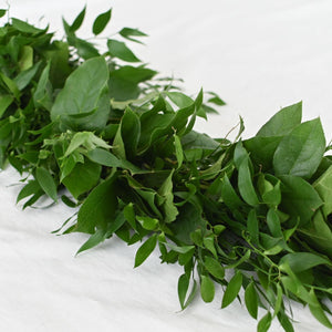Red Fox Floral. Dark Green Garland, diagonal view. A mix of darker greens such as Italian ruscus and salal greens.