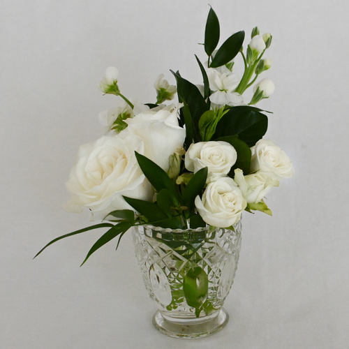 Red Fox Floral Romantic Garden Accent Arrangement. A petite gathering of garden roses, spray roses, football mum, and accents in white with eucalyptus and green foliage.