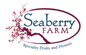 Seaberry Farm