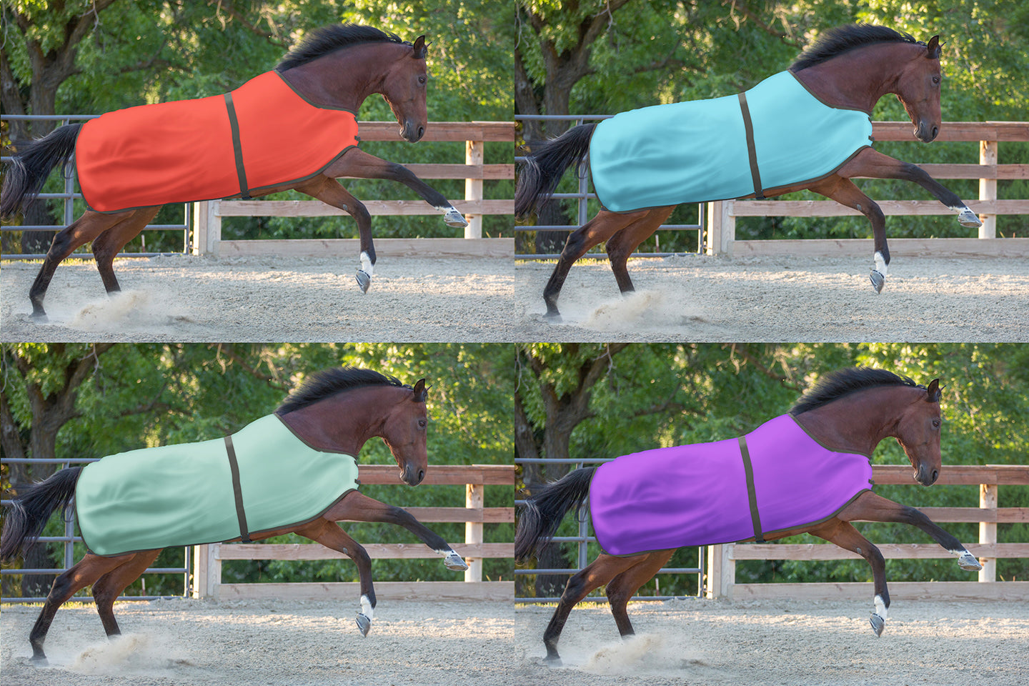 sample equine fabric colors