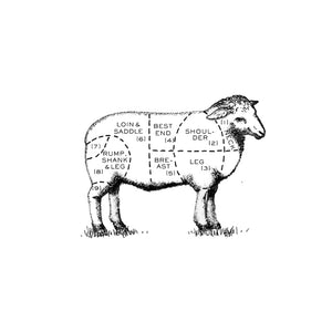 Illustration of different cuts of lamb, to highlight the leg of lamb.