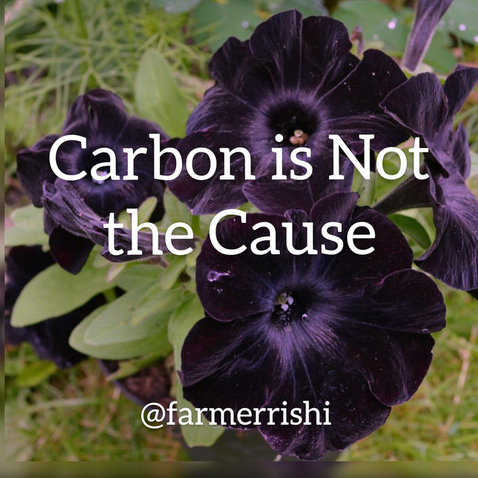 Carbon is Not the Cause