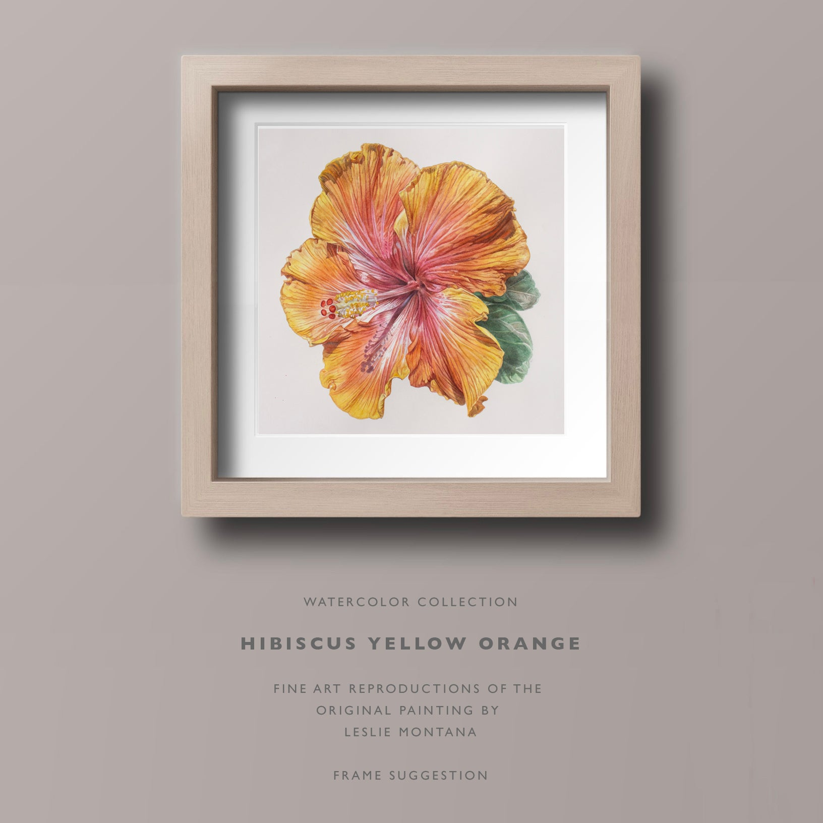 Shop Hibiscus fine art reproductions, giclee prints of the original watercolor painting by Leslie Montana