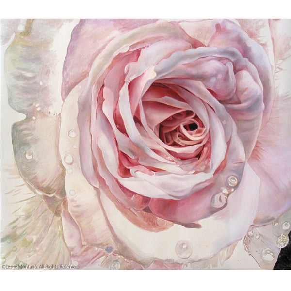 Ice Pink Rose painting by Leslie Montana