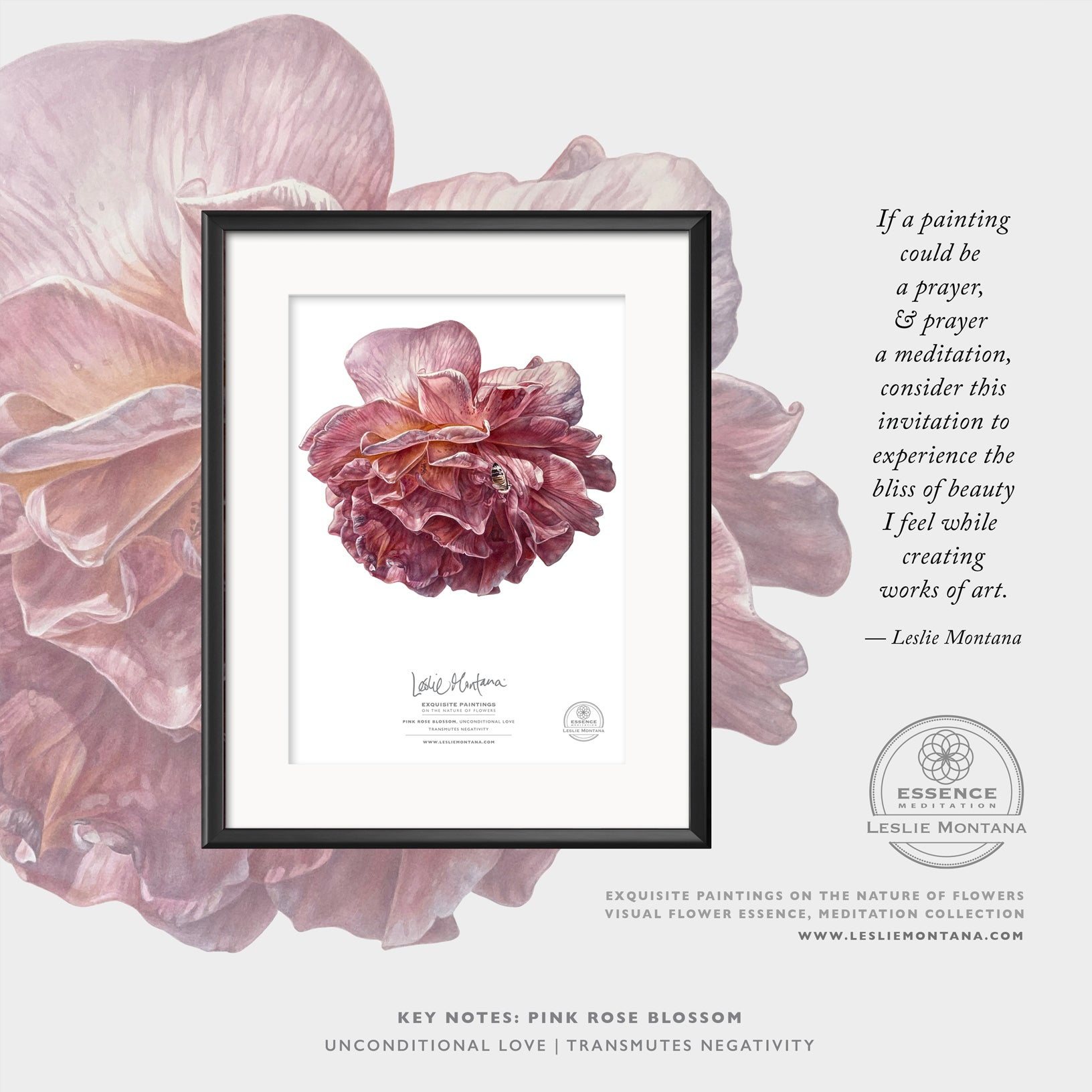 Pink Rose Blossom, Visual Flower Essence, Poster print
