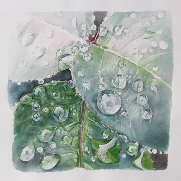 Rose Leaves after Rain watercolor painting by Leslie Montana