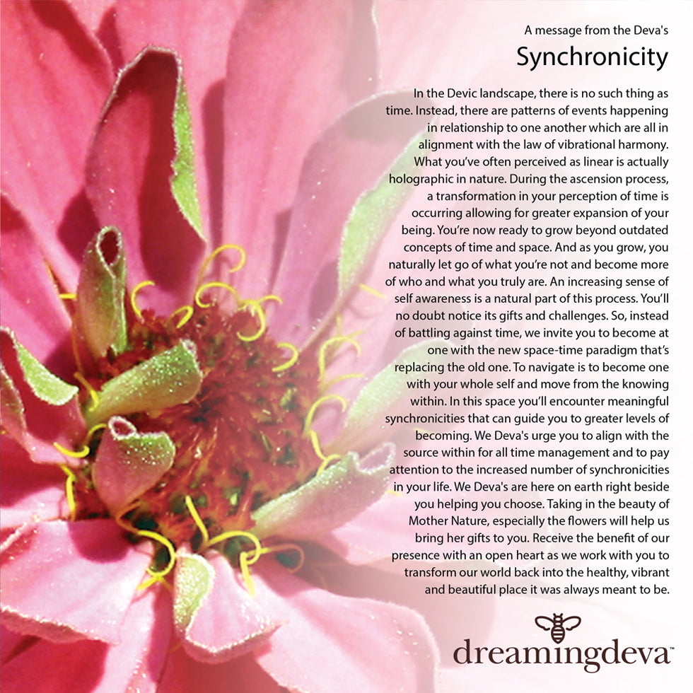 Synchronicty Zinnia from the Dreaming Deva collection by Leslie Montana Project