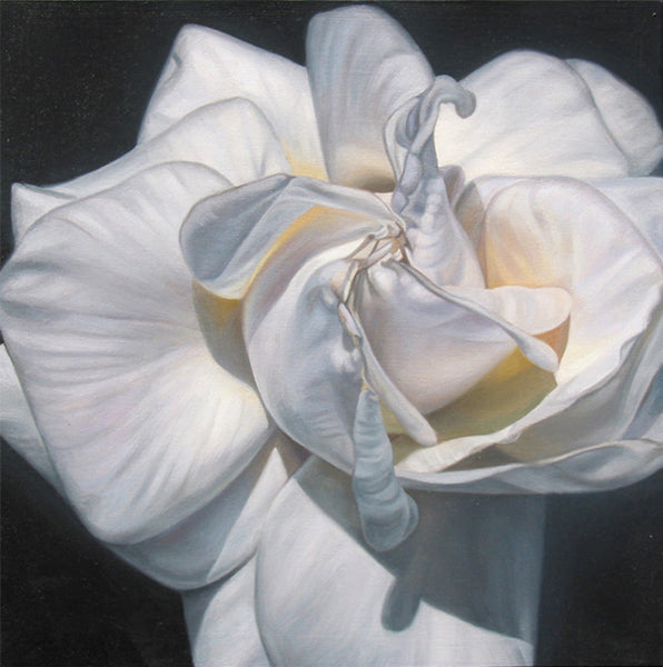 White Rose Bud oil painting by Leslie Montana