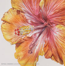 Load image into Gallery viewer, HIBISCUS YELLOW ORANGE, Giclee Print of original painting by Leslie Montana - Leslie Montana