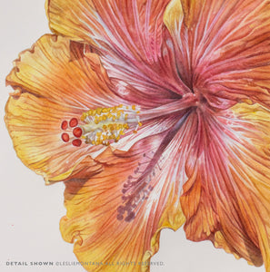 HIBISCUS YELLOW ORANGE, Giclee Print of original painting by Leslie Montana - Leslie Montana