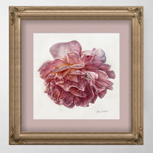 Load image into Gallery viewer, PINK ROSE BLOSSOM, Special Edition Archival Print, Frame Ready - Leslie Montana