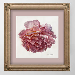 PINK ROSE BLOSSOM, Special Edition Archival Print, Frame Ready - Leslie Montana