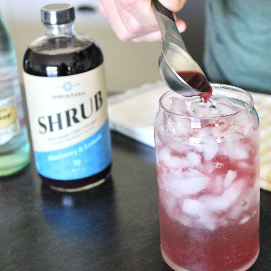 Blueberry & Lemon Shrub-Shrub-Apple State Vinegar
