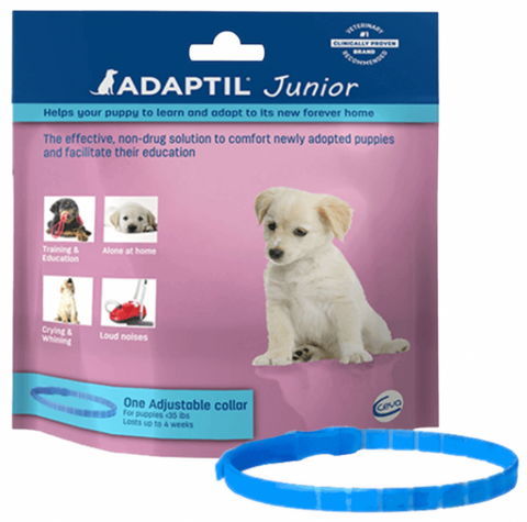 Junior Calming Puppy Collar