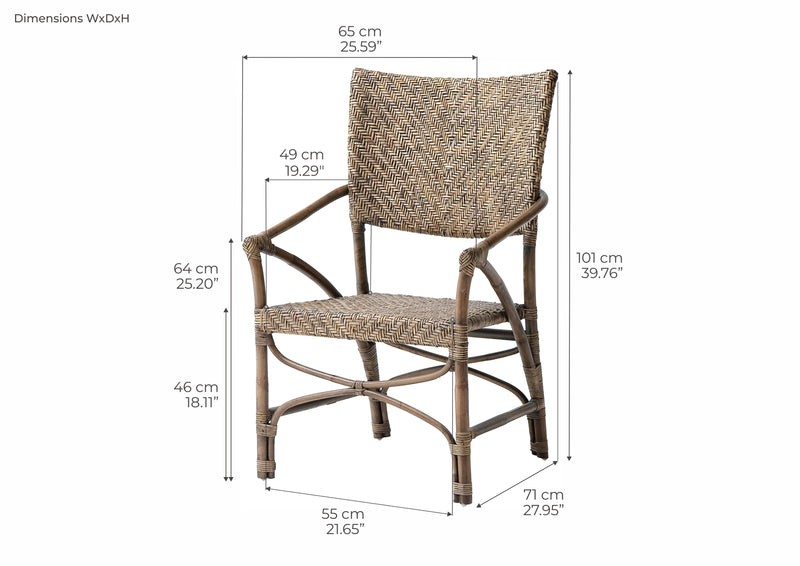 Jester Rattan Arm Chair (Set of 2)