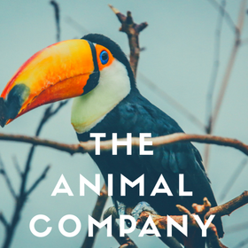The Animal Company