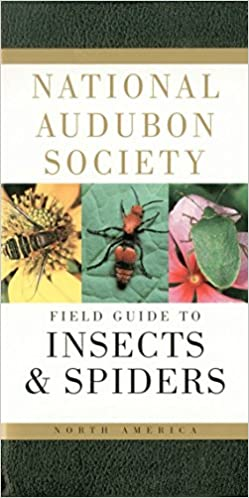 National Audubon Society - Insects & Spiders North America