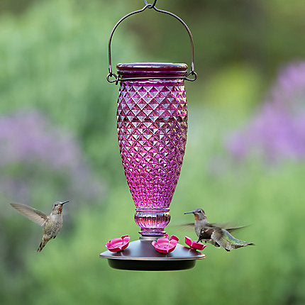 Perky Pet Vintage Inspired Amethyst Hummingbird Feeder