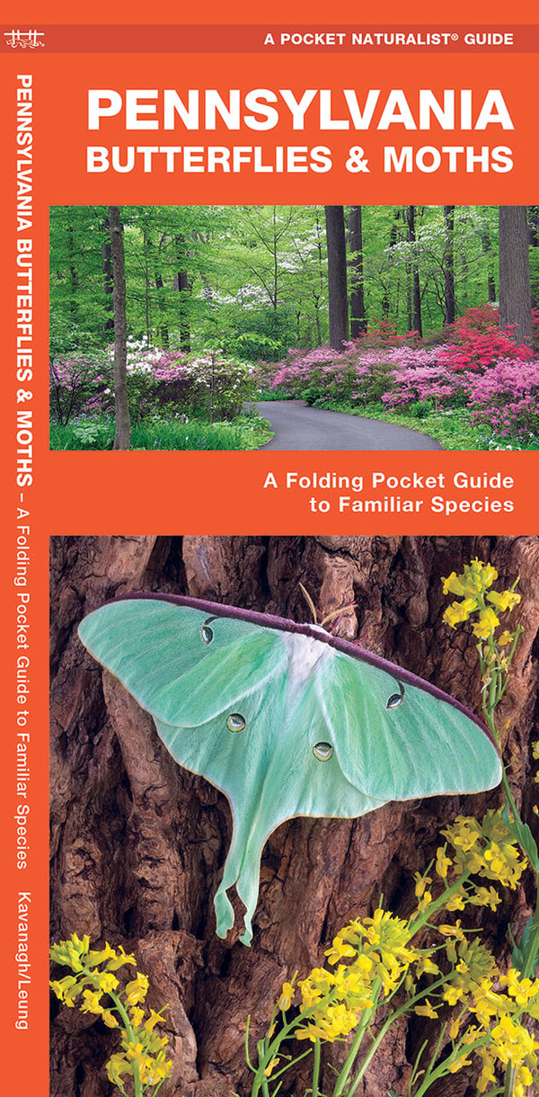 PA Butterfly & Moths Pocket Guide
