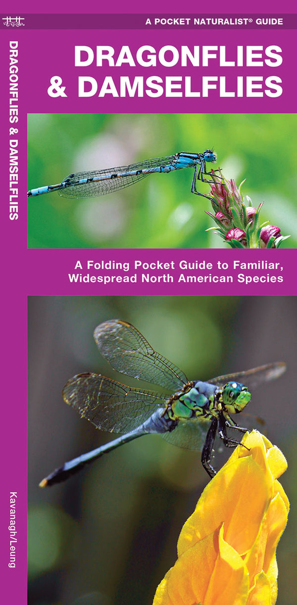 Dragonflies And Damselflies Pocket Guide