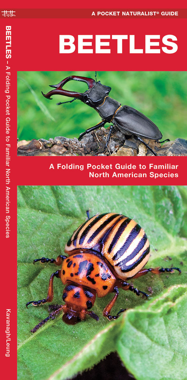 Beetles Pocket Guide