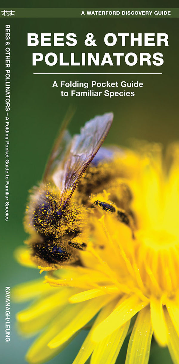 Bees And Other Pollinators Pocket Guide