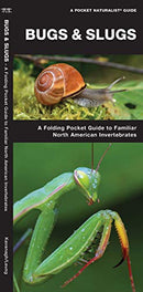 Bugs And Slugs Pocket Guide