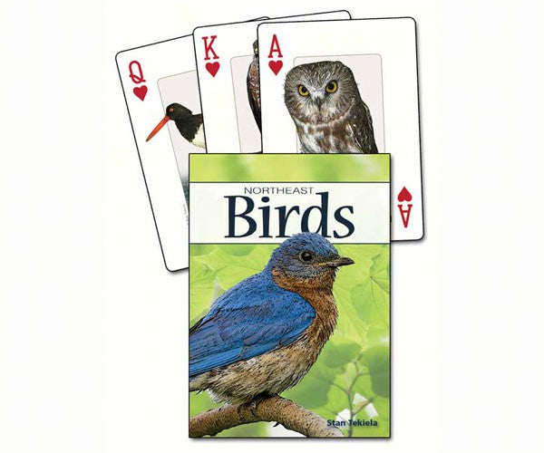 North East Birds Playing Cards