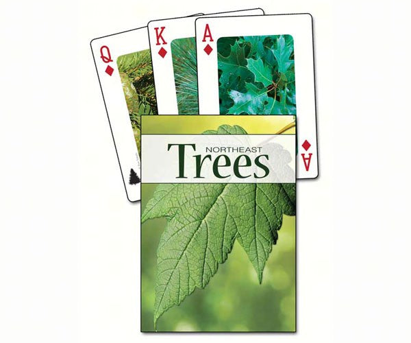 Northeast Trees Playing Cards