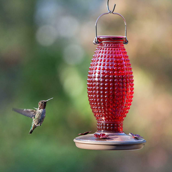 Perky Pet Red Vintage Glass Hummingbird Feeder
