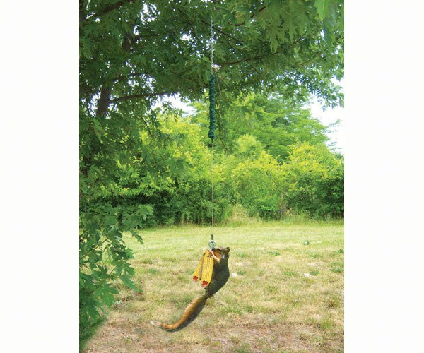 Deluxe Squngee Squirrel Feeder