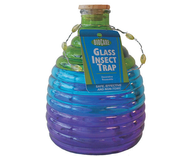 Glass Insect Trap