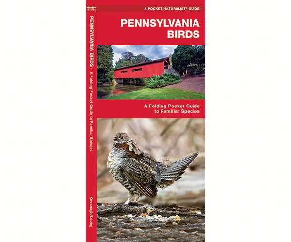 Pennsylvania Birds Pocket Guide