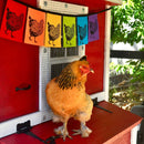 Wind Sparrow Rainbow Chicken Indoor/Outdoor Flags