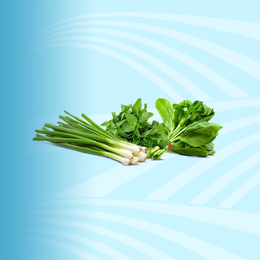 Herbs - 2kShopping.com - Grocery | Health | Technology