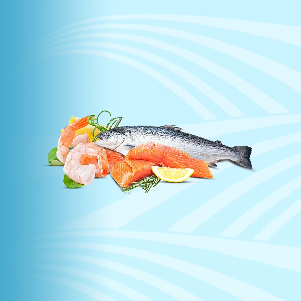 Fresh Fish & Sea Food - 2kShopping.com - Grocery | Health | Technology