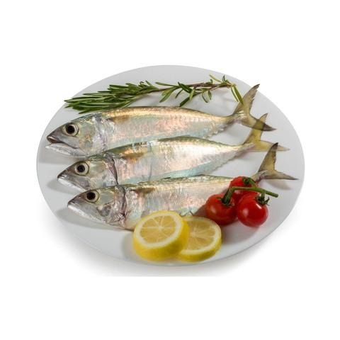 Fresh Small Mackerel / Kg - 2kShopping.com - Grocery | Health | Technology