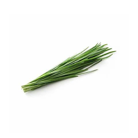 Chives (Palestine) / (ثوم معمر (فلسطين - 2kShopping.com - Grocery | Health | Technology