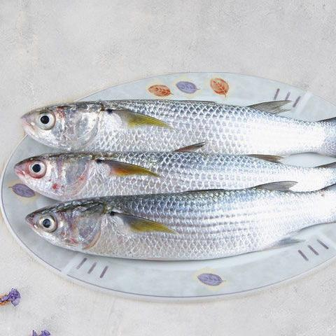 Mullets Fresh Fish | سمك البوري الطازج - 2kShopping.com - Grocery | Health | Technology