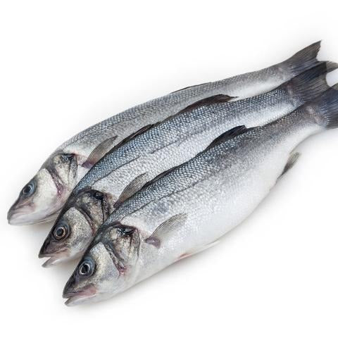 Sea bass Fresh Fish |  سمك سيباس - 2kShopping.com - Grocery | Health | Technology
