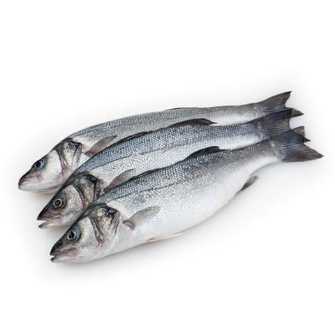 Supreme Fresh Fish |  سمك السوبريم الطازج - 2kShopping.com - Grocery | Health | Technology