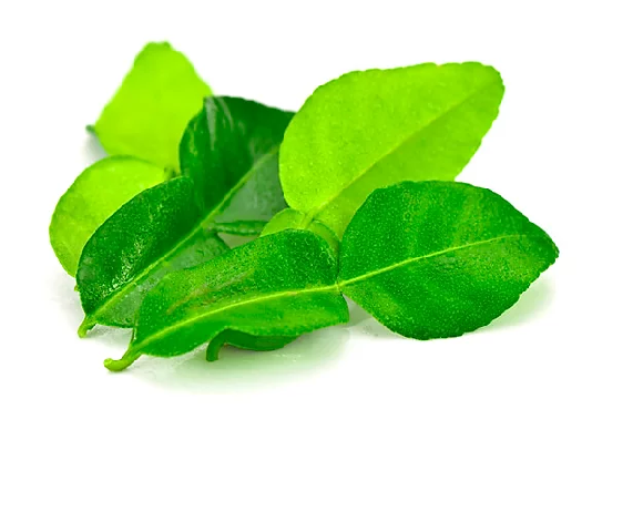 Lime Leaves / أوراق الليمون - 2kShopping.com - Grocery | Health | Technology