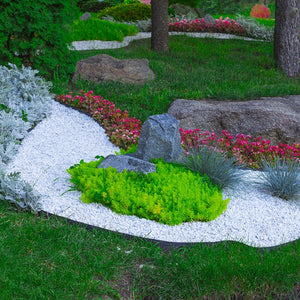 Grass Barrier - Landscape Edging - 10 inch Depth