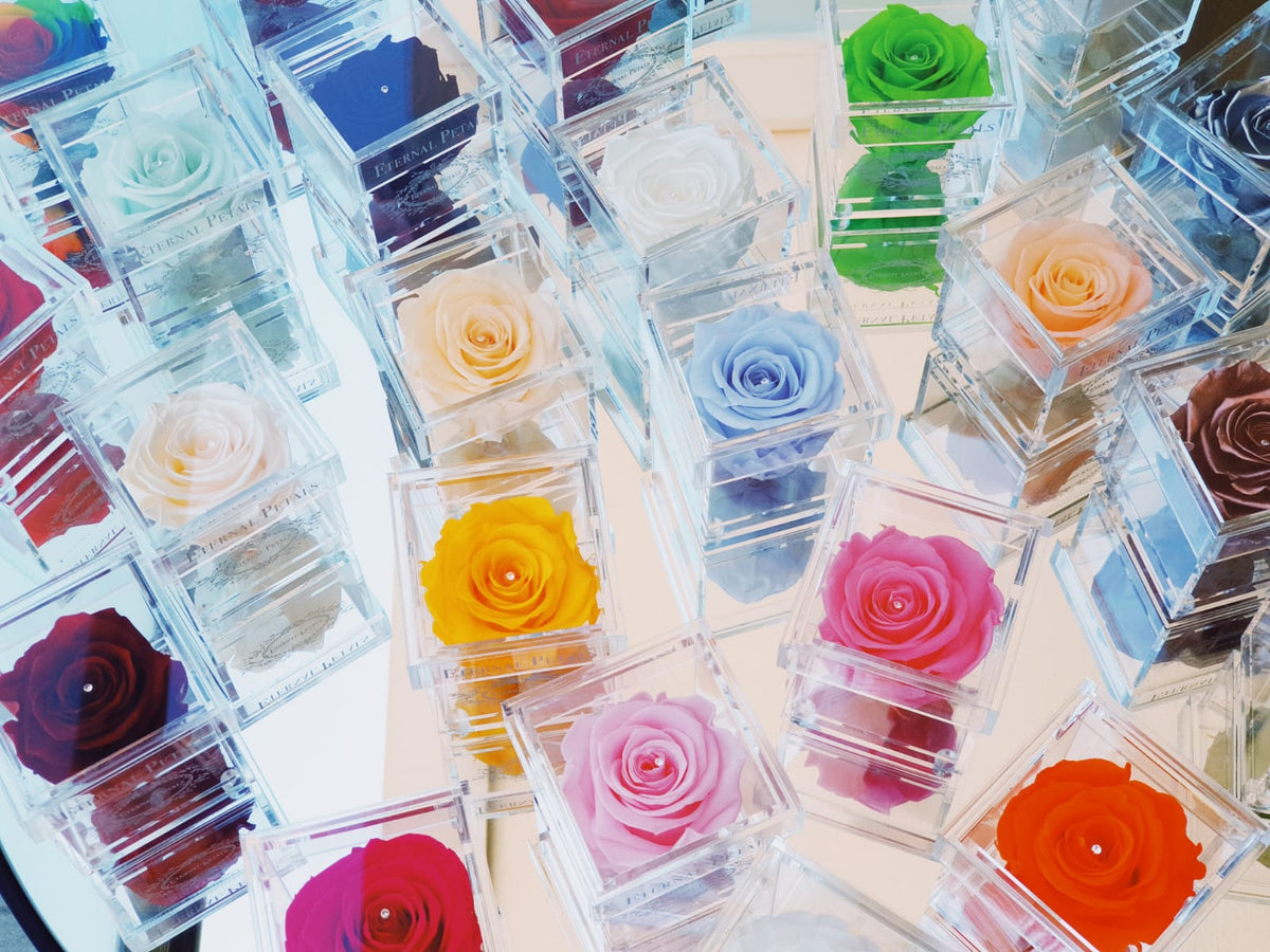The Perfect Colour Rose for Every Occasion