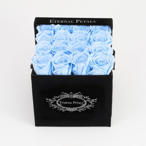 BABY BLUE | BLACK FLOWER BOX