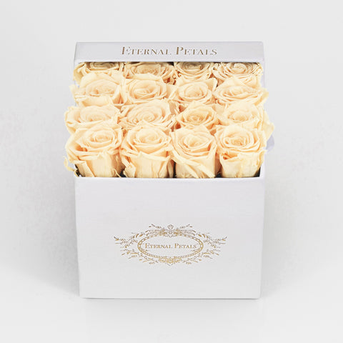 CHAMPAGNE | WHITE FLOWER BOX