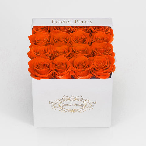 ORANGE | WHITE FLOWER BOX