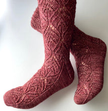 Load image into Gallery viewer, Zinderella Socks